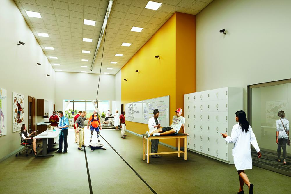 rendering biomechanics lab