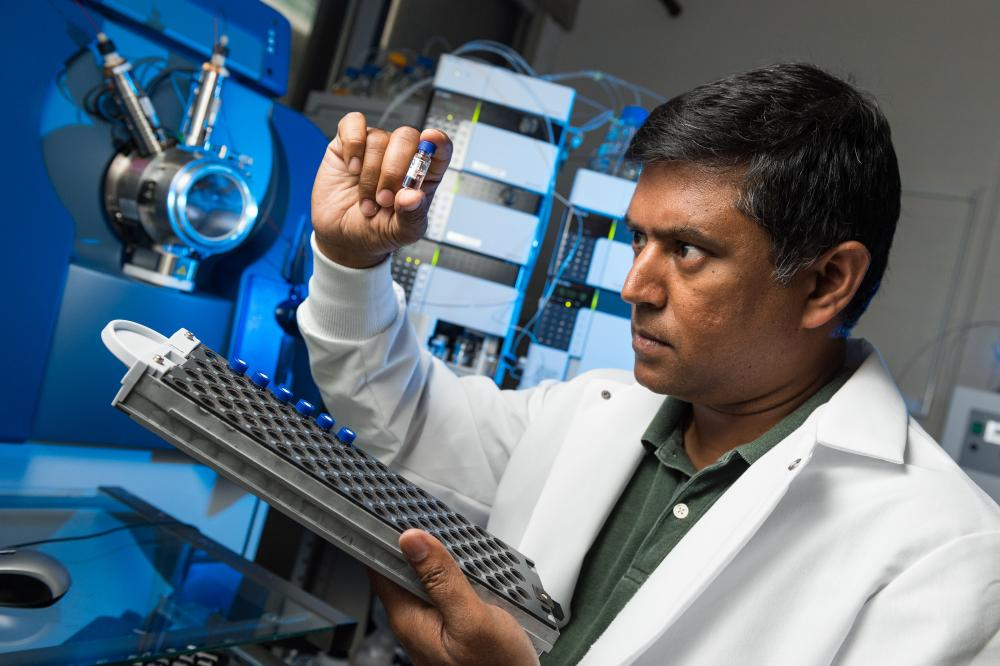 Dr. Wijesinghe examines a patient's plasma sample extract before analyzing it with the chromatographic separation device and mass spectrometer on the MCV Campus at VCU Health. Photo: Kevin Schindler